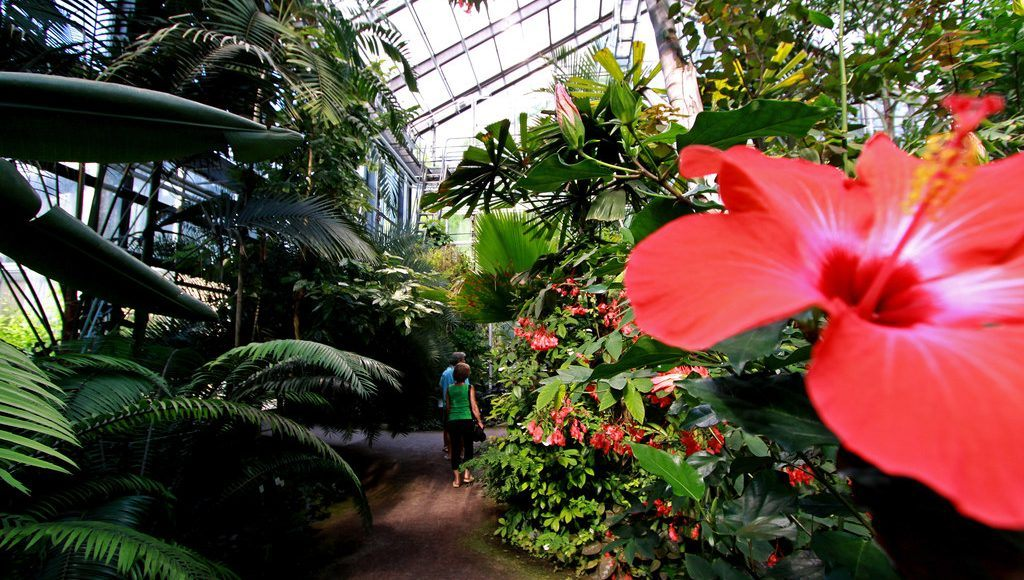 Botanischer Garten Jena Thüringen Mach Urlaub
