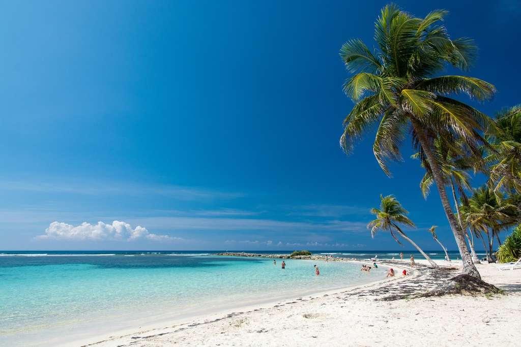 Guadeloupe © Sébastien KOMARNICKI/ AdobeStock
