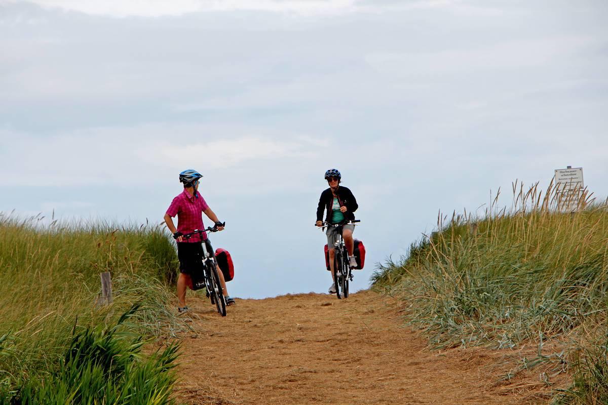 Ostseeküstenradweg bei Dierhagen © Joachim Negwer