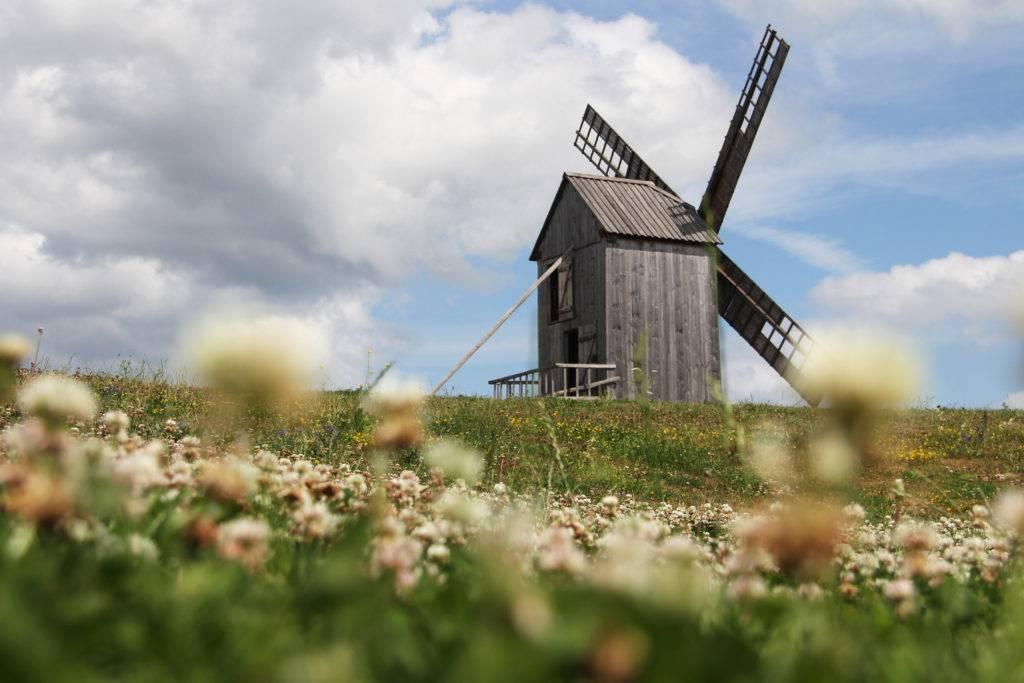 Typisch für Saaremaa: Einst gab es hier rund 1200 Windmühlen, die als Zeichen von Wohlstand galten. Auch heute noch zieren sie die Logos der Insel-eigenen Produkte – doch so gut erhaltene Exemplare wie dieses bei Angla gibt es nur wenige. © Jessica Mintelowsky