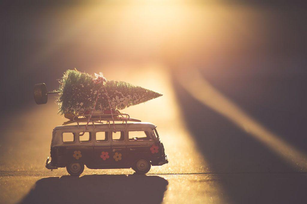 Ein kleiner Spielzeugtannenbaum ist mit einer rot-weißen Schnur auf einem Mini-Bulli gebunden.